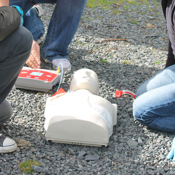 Training Courses First Aid